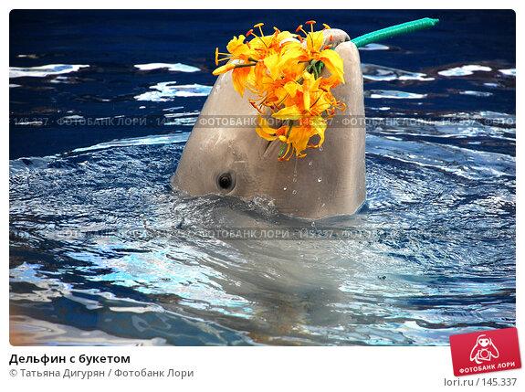 Купить «Дельфин с букетом», фото № 145337, снято 22 июля 2007 г. (c) Татьяна Дигурян / Фотобанк Лори