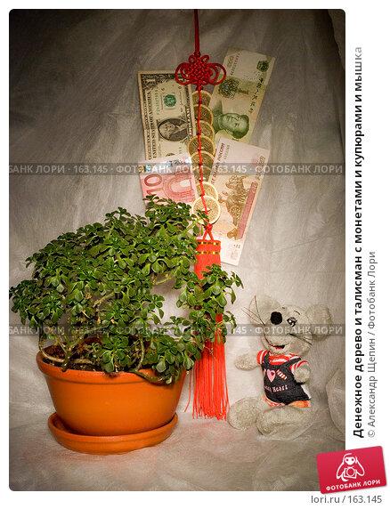 Денежное дерево и талисман с монетами и купюрами и мышка, эксклюзивное фото № 163145, снято 27 декабря 2007 г. (c) Александр Щепин / Фотобанк Лори