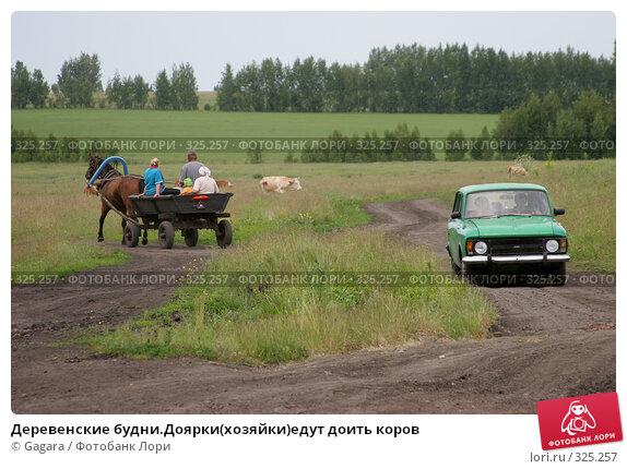 Деревенские будни.Доярки(хозяйки)едут доить коров, фото № 325257, снято 8 октября 2007 г. (c) Gagara / Фотобанк Лори