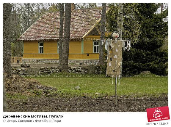 Деревенские мотивы. Пугало, фото № 43045, снято 25 апреля 2017 г. (c) Игорь Соколов / Фотобанк Лори