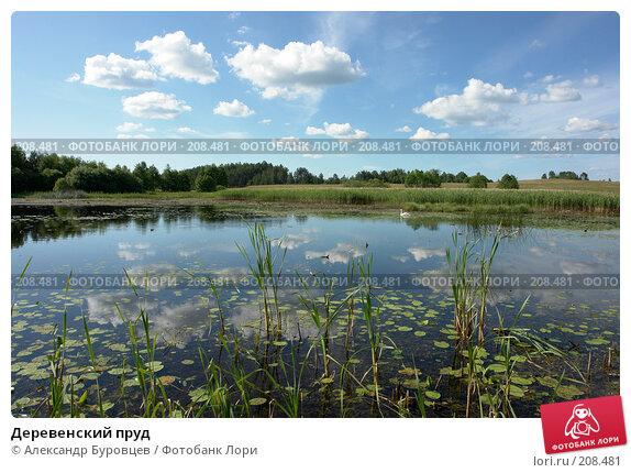 Деревенский пруд, фото № 208481, снято 2 июля 2006 г. (c) Александр Буровцев / Фотобанк Лори