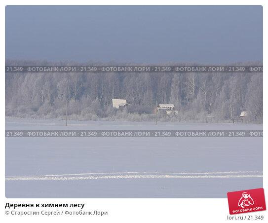 Купить «Деревня в зимнем лесу», фото № 21349, снято 17 февраля 2006 г. (c) Старостин Сергей / Фотобанк Лори