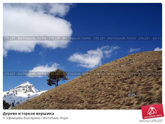 Дерево и горная вершина, фото № 279237, снято 5 декабря 2016 г. (c) Уфимцева Екатерина / Фотобанк Лори