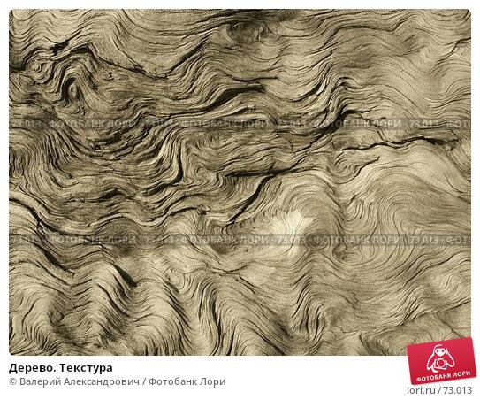 Дерево. Текстура, фото № 73013, снято 20 января 2017 г. (c) Валерий Александрович / Фотобанк Лори