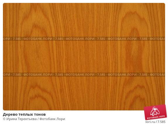 Дерево теплых тонов, эксклюзивное фото № 7585, снято 6 августа 2005 г. (c) Ирина Терентьева / Фотобанк Лори