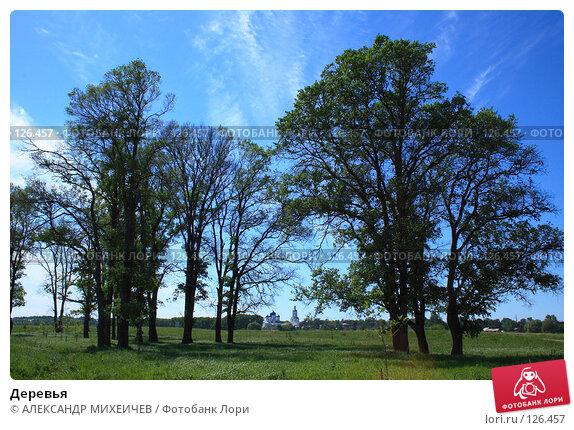 Купить «Деревья», фото № 126457, снято 2 июня 2007 г. (c) АЛЕКСАНДР МИХЕИЧЕВ / Фотобанк Лори