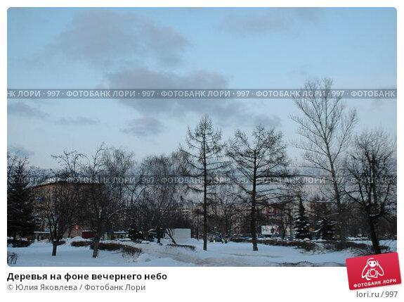 Купить «Деревья на фоне вечернего небо», фото № 997, снято 28 февраля 2006 г. (c) Юлия Яковлева / Фотобанк Лори