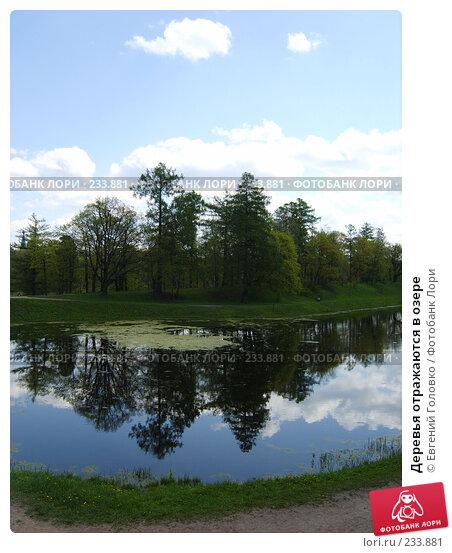 Деревья отражаются в озере, фото № 233881, снято 19 мая 2007 г. (c) Евгений Головко / Фотобанк Лори