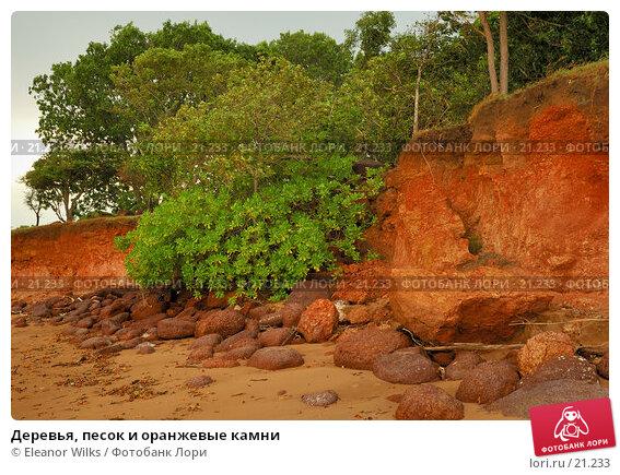 Деревья, песок и оранжевые камни, фото № 21233, снято 21 февраля 2007 г. (c) Eleanor Wilks / Фотобанк Лори