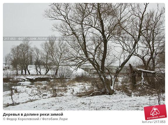 Деревья в долине реки зимой, фото № 217053, снято 18 февраля 2008 г. (c) Федор Королевский / Фотобанк Лори