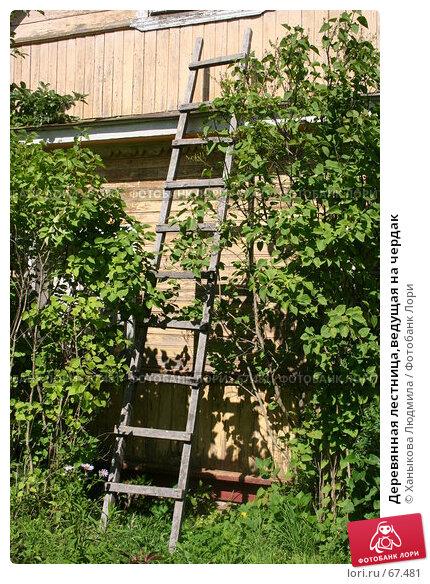 Деревянная лестница,ведущая на чердак, фото № 67481, снято 28 июля 2007 г. (c) Ханыкова Людмила / Фотобанк Лори