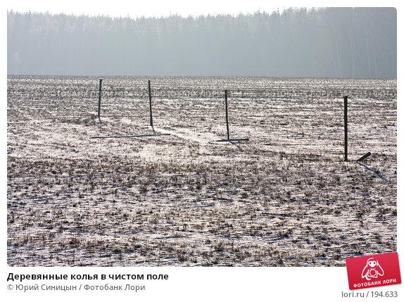 Деревянные колья в чистом поле, фото № 194633, снято 8 января 2008 г. (c) Юрий Синицын / Фотобанк Лори