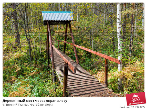 Купить «Деревянный мост через овраг в лесу», фото № 32934865, снято 11 сентября 2019 г. (c) Евгений Ткачёв / Фотобанк Лори