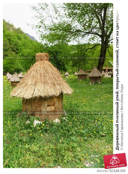 Купить «Деревянный пчелиный улей, покрытый соломой, стоит на цветущем лугу», фото № 32628329, снято 2 мая 2019 г. (c) Наталья Гармашева / Фотобанк Лори