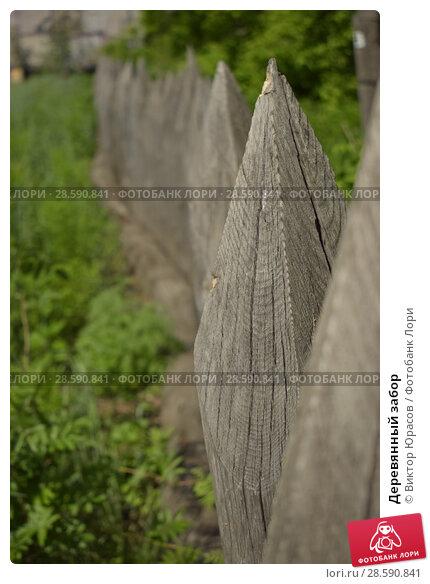 Купить «Деревянный забор», фото № 28590841, снято 15 июня 2017 г. (c) Виктор Юрасов / Фотобанк Лори