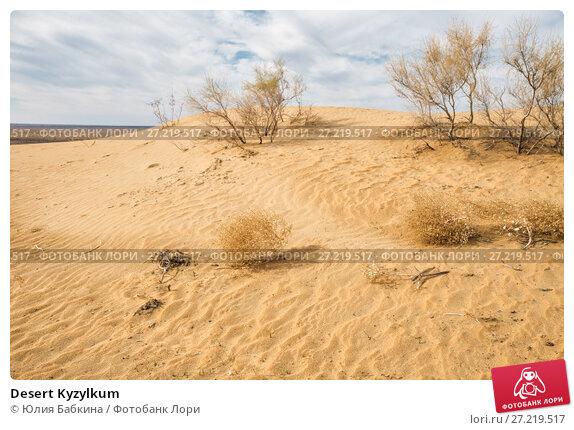 Купить «Desert Kyzylkum», фото № 27219517, снято 21 октября 2016 г. (c) Юлия Бабкина / Фотобанк Лори