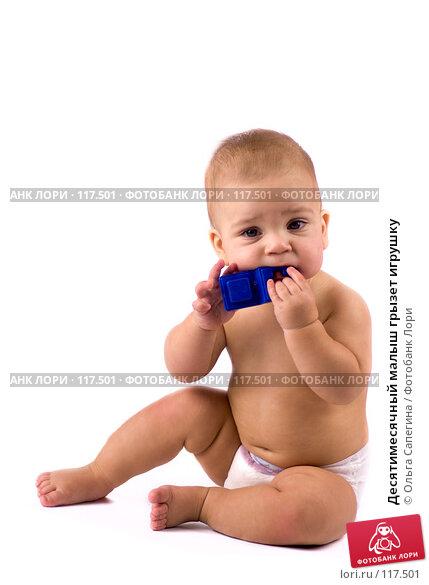 Купить «Десятимесячный малыш грызет игрушку», фото № 117501, снято 7 ноября 2007 г. (c) Ольга Сапегина / Фотобанк Лори