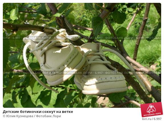 Купить «Детские ботиночки сохнут на ветке», эксклюзивное фото № 6997, снято 21 марта 2018 г. (c) Юлия Кузнецова / Фотобанк Лори