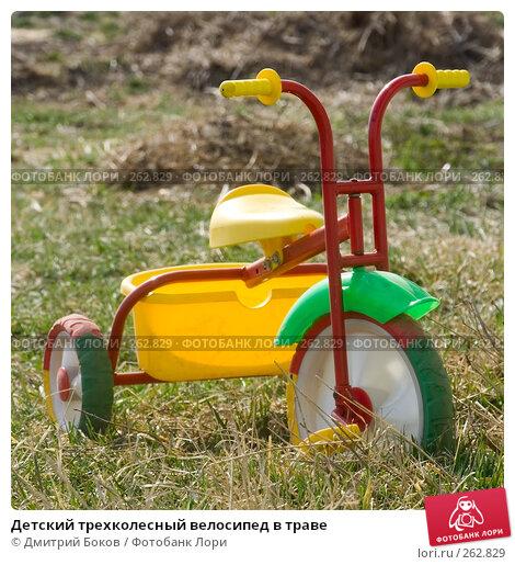 Детский трехколесный велосипед в траве, фото № 262829, снято 20 апреля 2008 г. (c) Дмитрий Боков / Фотобанк Лори