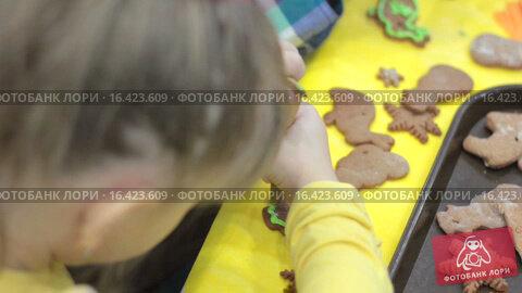 Купить «Девочка украшает имбирное печенье глазурью», видеоролик № 16423609, снято 14 декабря 2015 г. (c) Алексндр Сидоренко / Фотобанк Лори