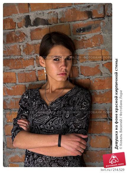 Купить «Девушка на фоне красной кирпичной стены», фото № 214529, снято 25 августа 2007 г. (c) Коваль Василий / Фотобанк Лори