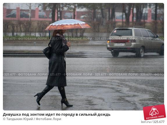 Девушка под зонтом идет по городу в сильный дождь, фото № 325677, снято 20 апреля 2007 г. (c) Талдыкин Юрий / Фотобанк Лори
