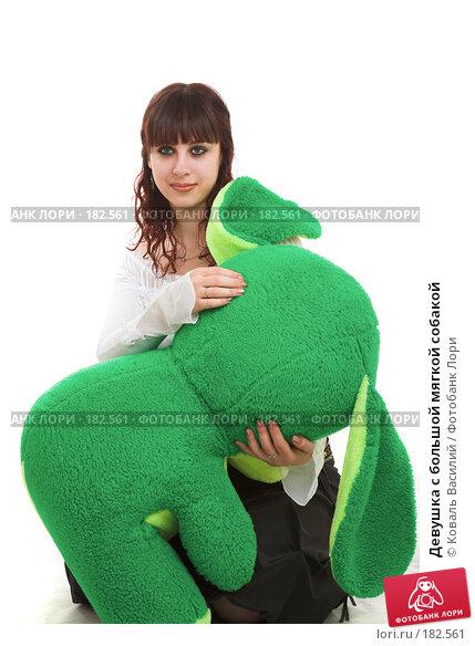 Девушка с большой мягкой собакой, фото № 182561, снято 8 декабря 2006 г. (c) Коваль Василий / Фотобанк Лори