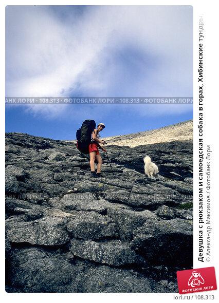 Девушка с рюкзаком и самоедская собака в горах, Хибинские тундры, Кольский полуостров, фото № 108313, снято 27 марта 2017 г. (c) Александр Максимов / Фотобанк Лори