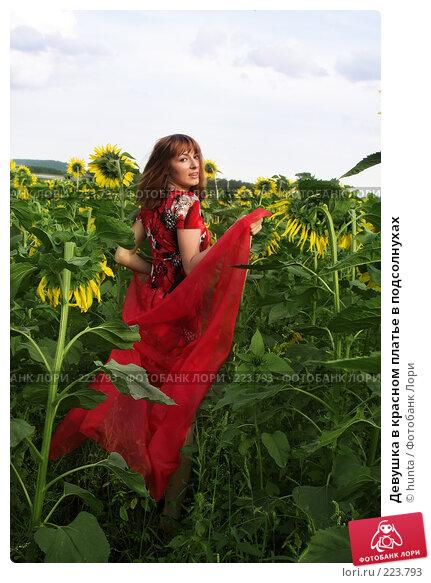 Купить «Девушка в красном платье в подсолнухах», фото № 223793, снято 4 августа 2007 г. (c) hunta / Фотобанк Лори