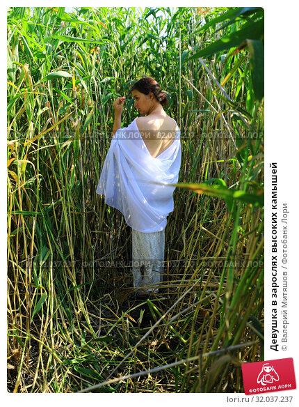 Купить «Девушка в зарослях высоких камышей», фото № 32037237, снято 19 июля 2019 г. (c) Валерий Митяшов / Фотобанк Лори
