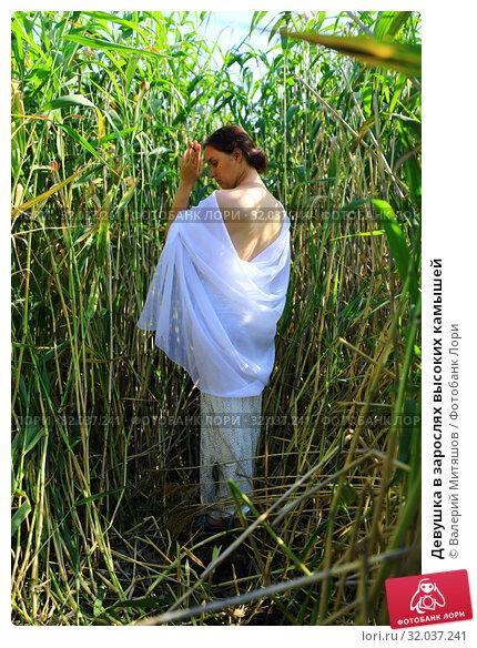 Купить «Девушка в зарослях высоких камышей», фото № 32037241, снято 19 июля 2019 г. (c) Валерий Митяшов / Фотобанк Лори
