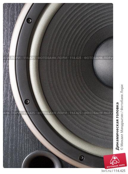 Купить «Динамическая головка», фото № 114425, снято 6 ноября 2007 г. (c) Михаил Мандрыгин / Фотобанк Лори
