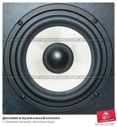 Динамик в музыкальной колонке, фото № 217597, снято 7 марта 2008 г. (c) Шемякин Евгений / Фотобанк Лори
