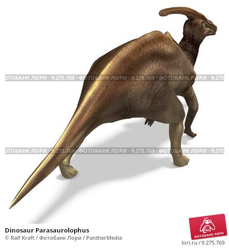 Купить «Dinosaur Parasaurolophus», фото № 9275769, снято 15 сентября 2019 г. (c) PantherMedia / Фотобанк Лори