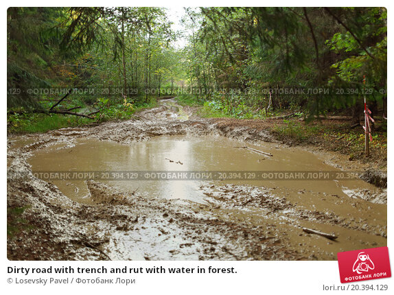 Dirty road with trench and rut with water in forest., фото № 20394129, снято 20 сентября 2014 г. (c) Losevsky Pavel / Фотобанк Лори