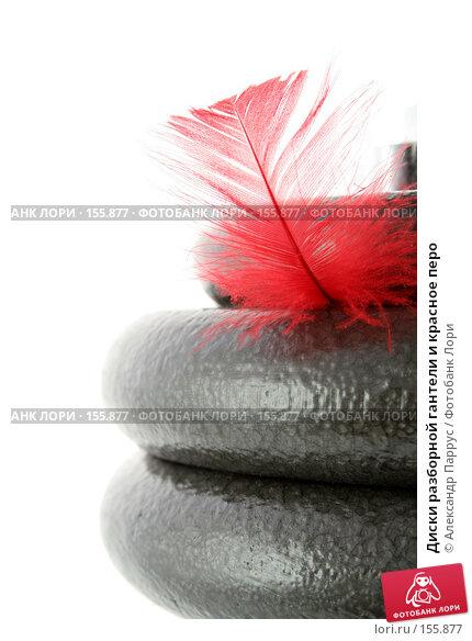 Диски разборной гантели и красное перо, фото № 155877, снято 17 июня 2007 г. (c) Александр Паррус / Фотобанк Лори
