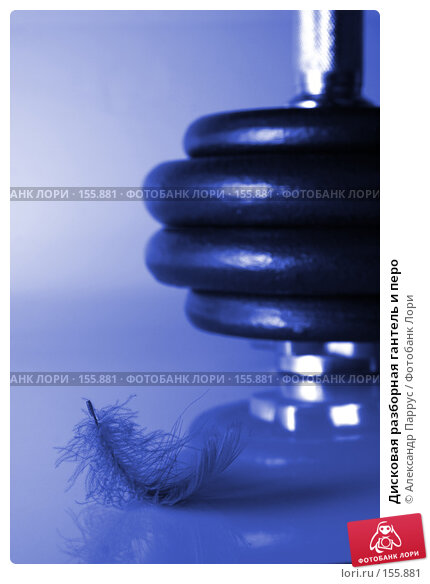 Дисковая разборная гантель и перо, фото № 155881, снято 17 июня 2007 г. (c) Александр Паррус / Фотобанк Лори