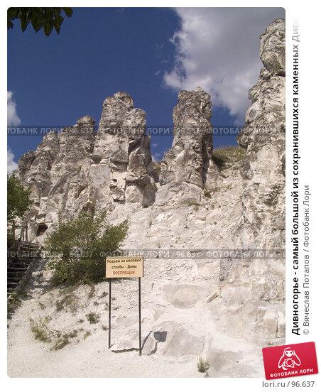 Дивногорье - самый большой из сохранившихся каменных Дивов, фото № 96637, снято 18 июля 2007 г. (c) Вячеслав Потапов / Фотобанк Лори