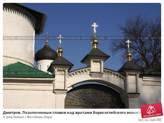 Купить «Дмитров. Позолоченные главки над вратами Борисоглебского монастыря», фото № 224785, снято 11 марта 2008 г. (c) Julia Nelson / Фотобанк Лори