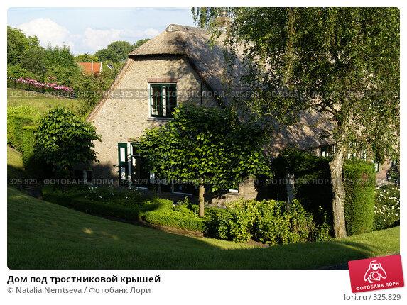 Дом под тростниковой крышей, эксклюзивное фото № 325829, снято 14 июня 2008 г. (c) Natalia Nemtseva / Фотобанк Лори