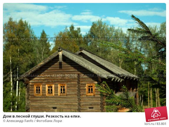 Купить «Дом в лесной глуши. Резкость на елке.», фото № 83801, снято 7 августа 2007 г. (c) Александр Fanfo / Фотобанк Лори