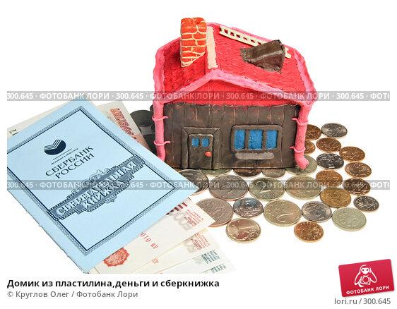Домик из пластилина,деньги и сберкнижка, фото № 300645, снято 27 мая 2008 г. (c) Круглов Олег / Фотобанк Лори