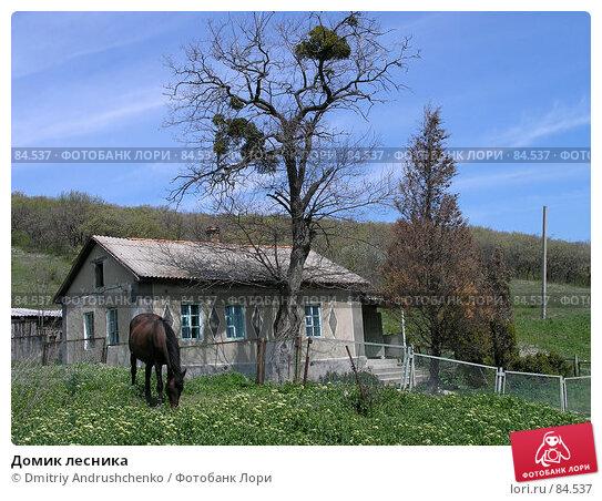 Домик лесника, фото № 84537, снято 5 мая 2007 г. (c) Dmitriy Andrushchenko / Фотобанк Лори