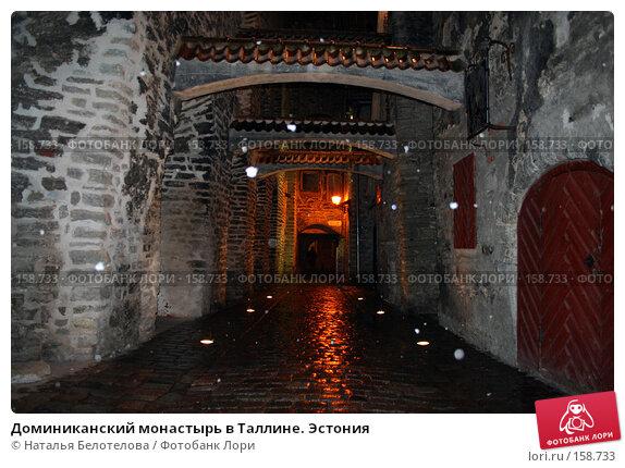 Доминиканский монастырь в Таллине. Эстония, фото № 158733, снято 31 декабря 2006 г. (c) Наталья Белотелова / Фотобанк Лори