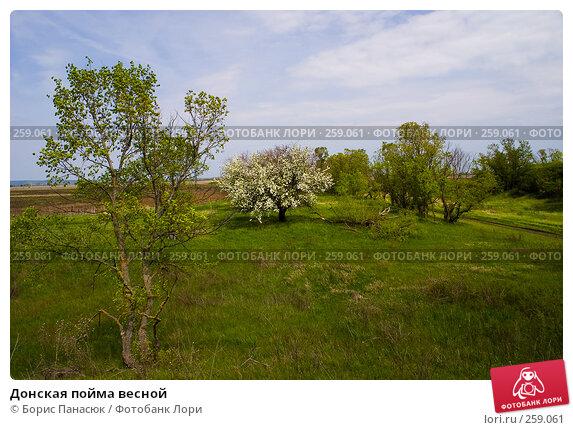 Донская пойма весной, фото № 259061, снято 19 апреля 2008 г. (c) Борис Панасюк / Фотобанк Лори