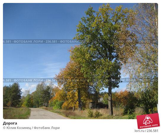 Дорога, фото № 236581, снято 23 сентября 2007 г. (c) Юлия Козинец / Фотобанк Лори