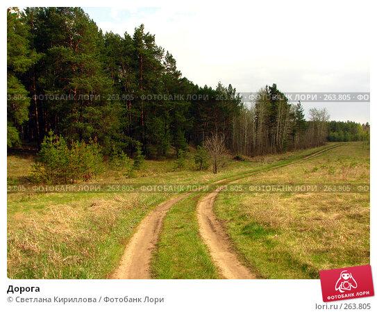 Дорога, фото № 263805, снято 26 апреля 2008 г. (c) Светлана Кириллова / Фотобанк Лори