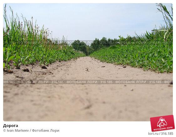 Дорога, фото № 316185, снято 9 июня 2008 г. (c) Василий Каргандюм / Фотобанк Лори