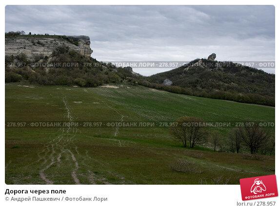 Дорога через поле, фото № 278957, снято 2 мая 2007 г. (c) Андрей Пашкевич / Фотобанк Лори