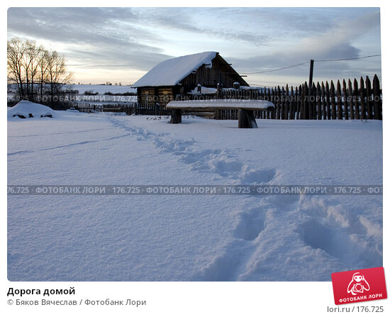 Дорога домой, фото № 176725, снято 3 января 2008 г. (c) Бяков Вячеслав / Фотобанк Лори